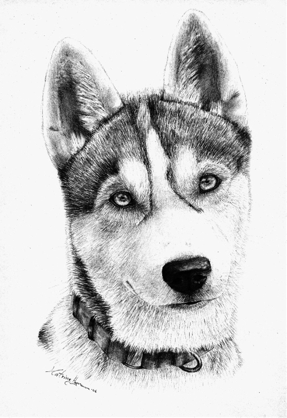 Красивый рисунок собаки 2018