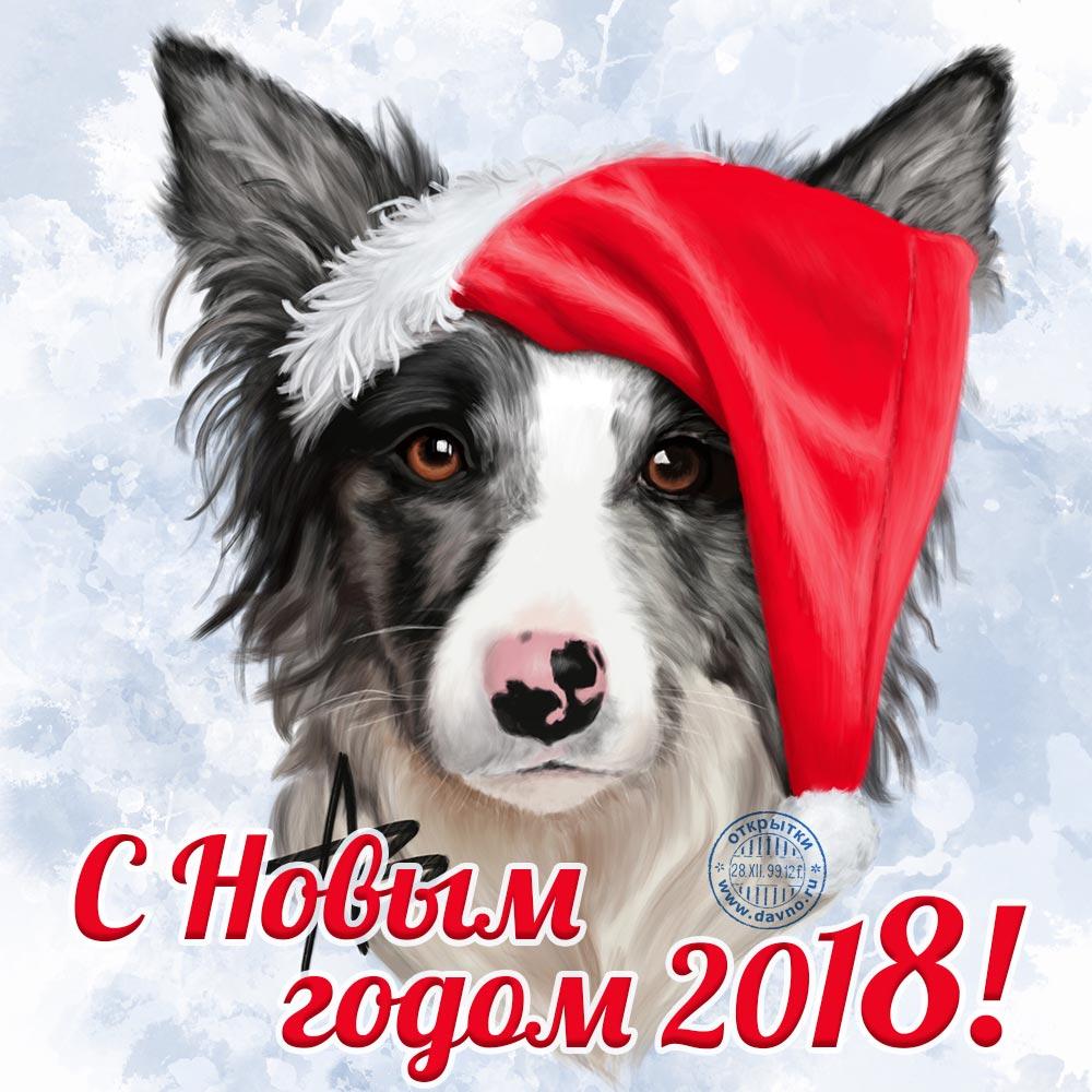 Открытка с новым годом 2018 - годом собаки